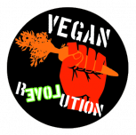 Button - Vegan Revolution Karotte