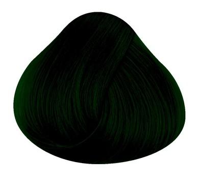 Directions Haartönung ALPINE GREEN 89ml