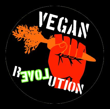 Button - Vegan Revolution Karotte
