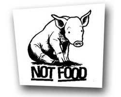 Aufnäher: Not Food