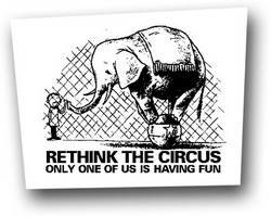 Aufnäher: Rethink the circus
