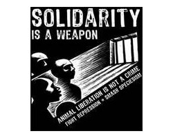 Aufnäher: Solidarity is a weapon