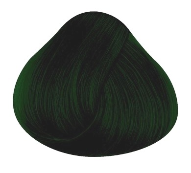 Directions Haartönung Alpine Green