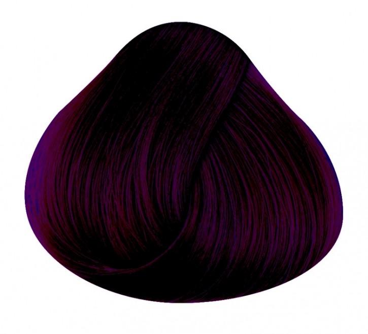 Directions Haartönung Dark Tulip