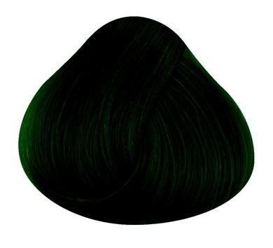 Directions Haartönung Ebony